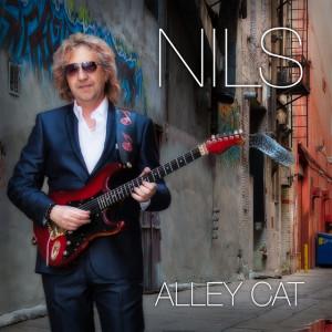 alleycat-640x640